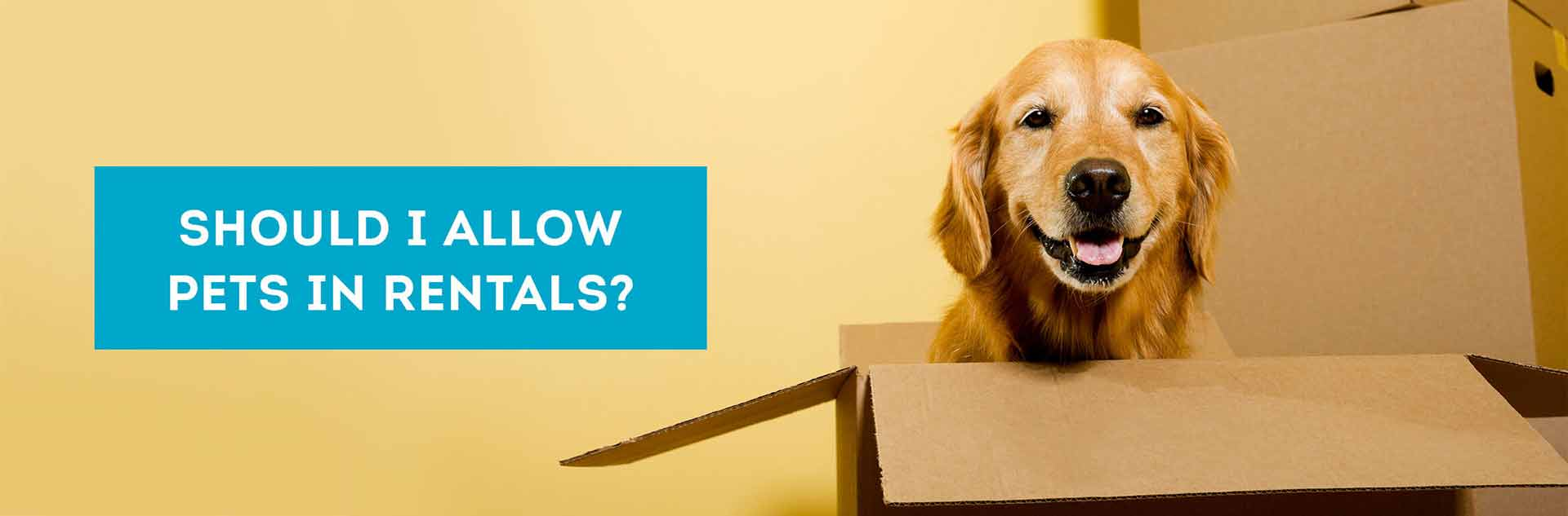 landlord pros and cons of pets in rental properties