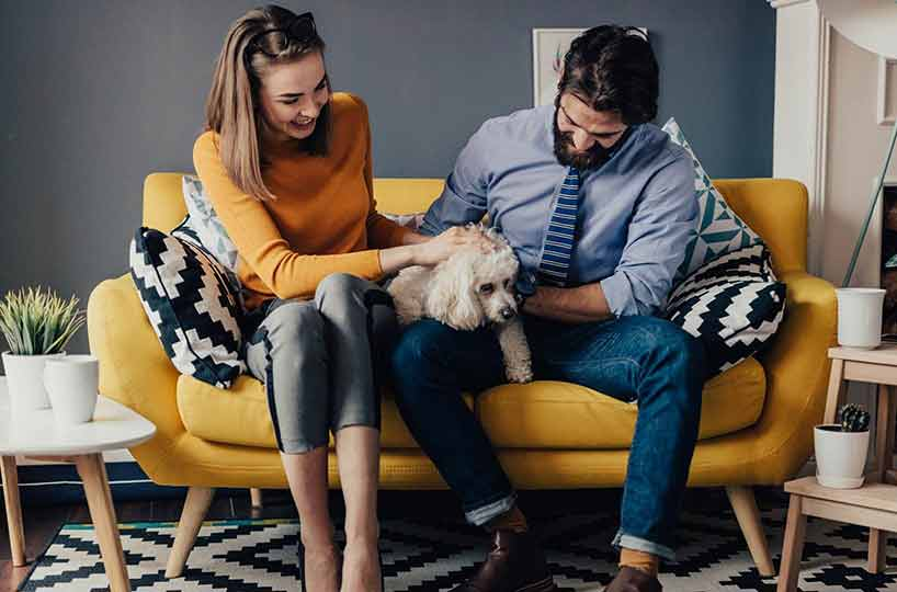 Pros to allowing pets in rental properties